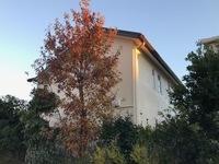 12月13日完成です。福岡市東区香椎照葉・Y様邸 外壁塗装工事